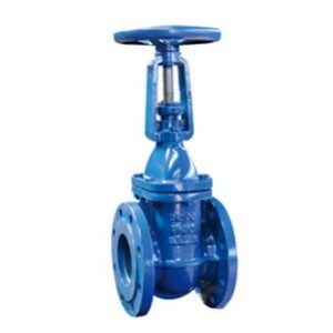 DIN Rising Stem Cast Iron Gate Valve